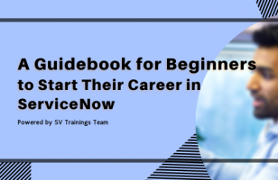 A Guidebook for Beginners to Start Their Career in ServiceNow svtrainings