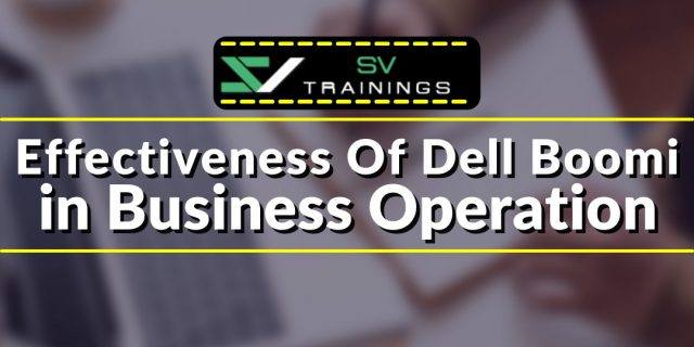 Dell Boomi online Training effectivenesson BusinessOperations